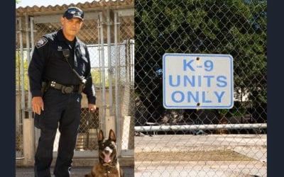 K-9 Unit Spotlight: Davila & Arrow